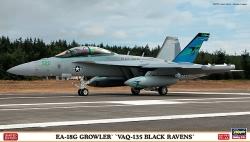 Hasegawa 1:72 - EA-18G Growler VAQ-135 Black Ravens
