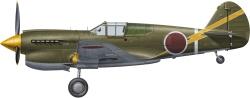 H-SP304 - Hasegawa 1:48 - P-40E Warhawk Prisoner of War