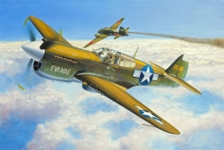 Revell 1:144 Micro Wings - P-40E Warhawk